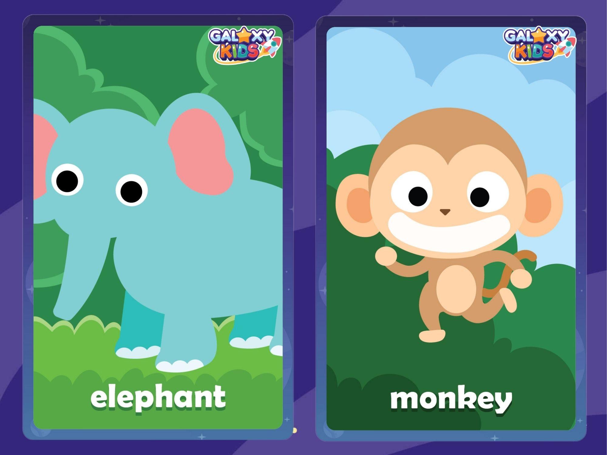 Animal Flashcards Elephant and Monkey
