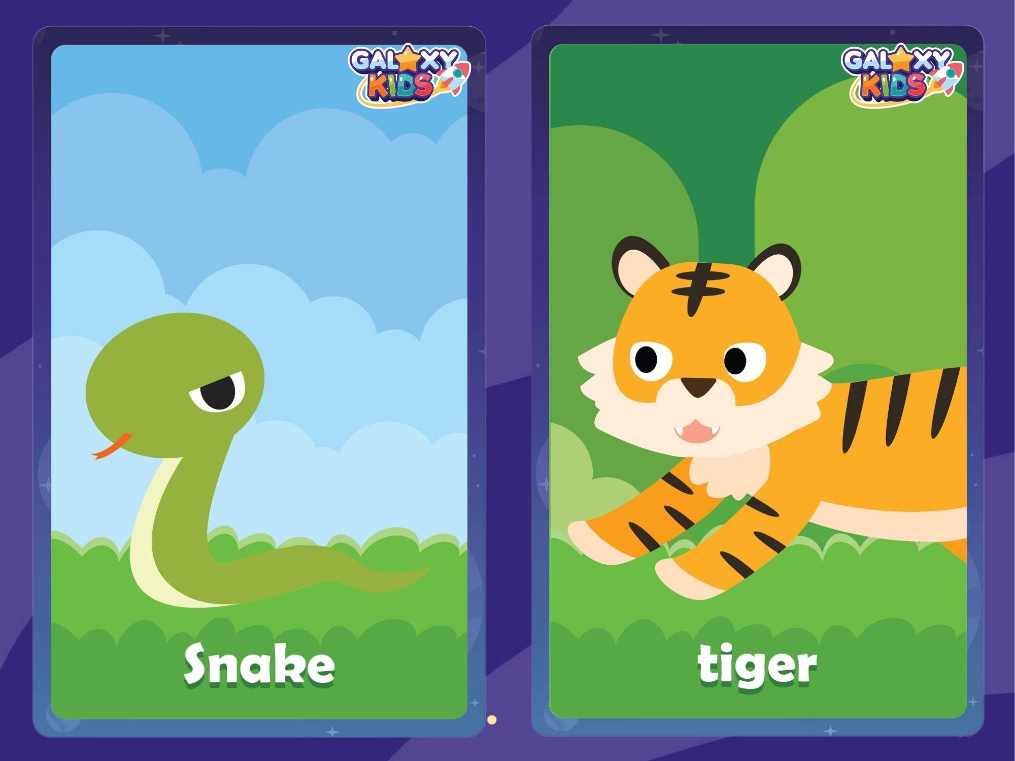 Animal Flashcards Snake and Tiger