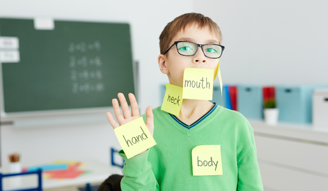 Body Parts  Vocabulary in English for Kids
